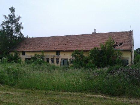 Srnojedy